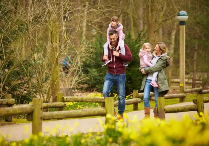 Centre Parcs closes sites until early January